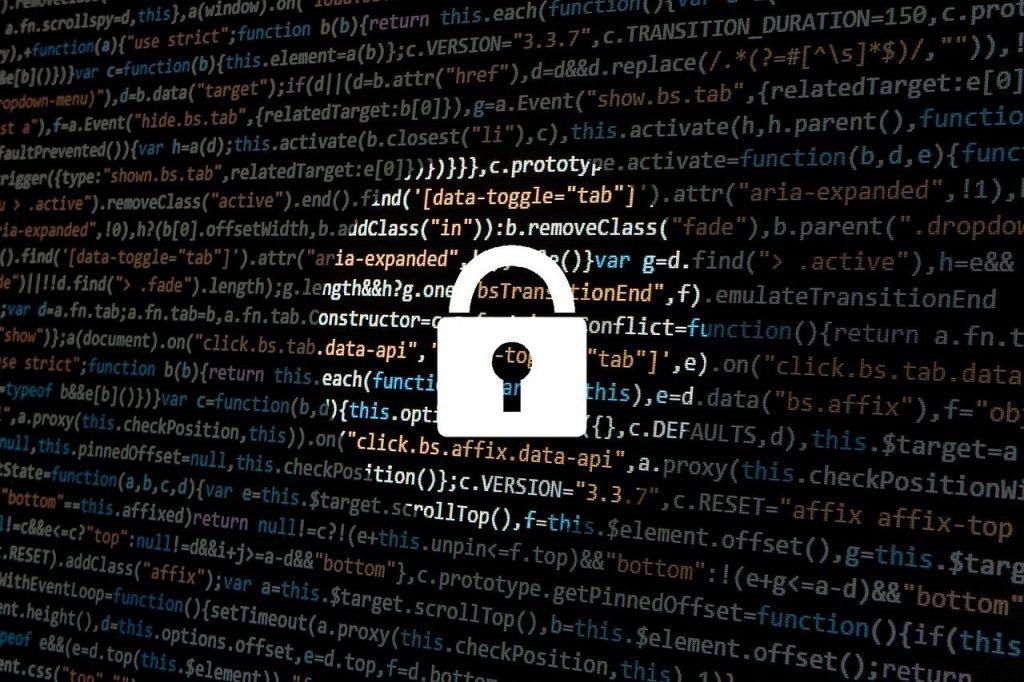pirate, le piratage, la cyber-sécurité